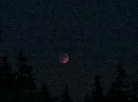 Supermoon Eclipse from my cell phone