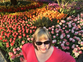 me with hybrid tulips